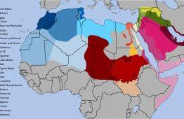 נוטריון ערבית